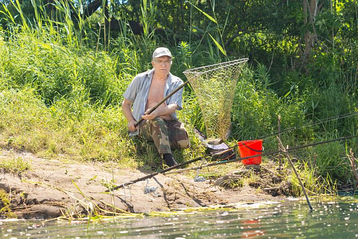 kozzi-11403317-Elderly fisherman landing a fish in a fish net-883x588