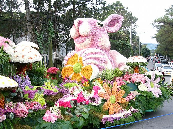 Flower Festival Float 4