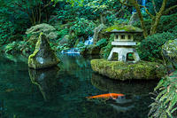 kozzi-A Lantern and Waterfall in the Portland Japanese Garden-1774x1183