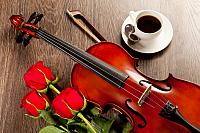 kozzi-5018429-red roses and a violin-883x588
